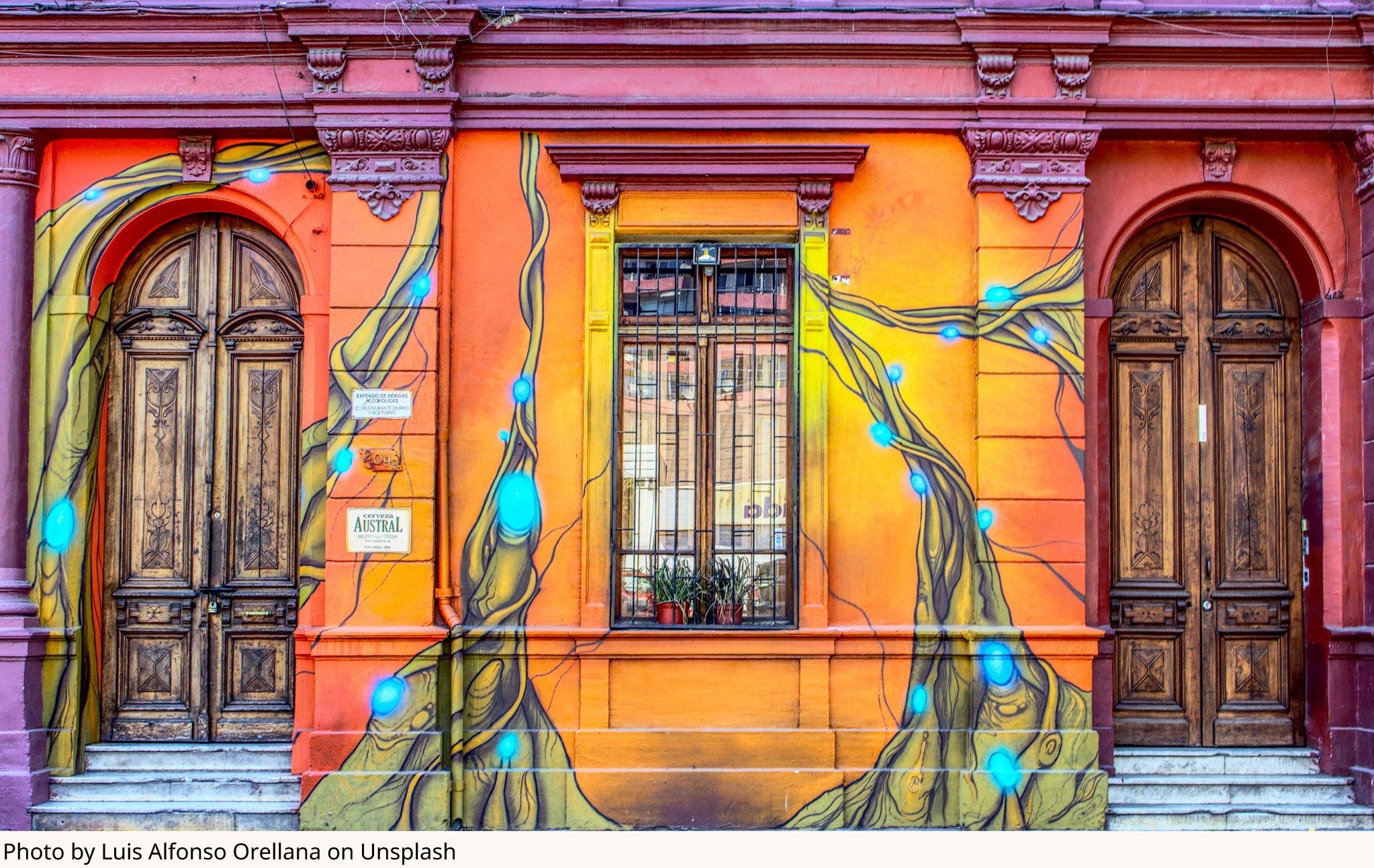 Photo by Luis Alfonso Orellana on Unsplash